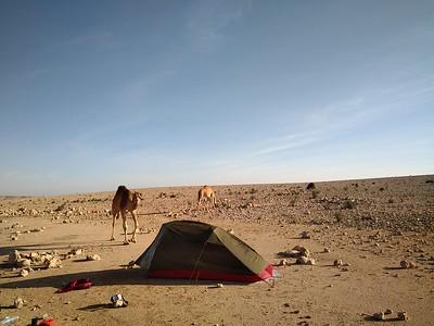 plateau de Selmah