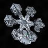 Snowflake 884