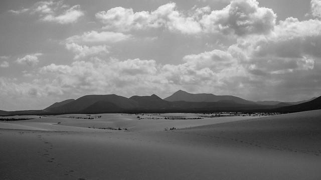 Las Dunas Corralejo   Canary Islands
