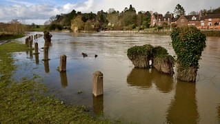 RIVER SEVERN IN FLOOD | by chris .p