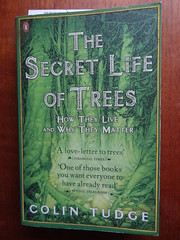 The Secret Life of Trees - Colin Tudge