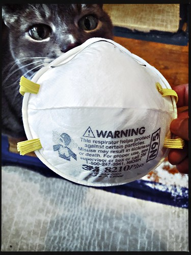 Pip checks out the N95 particulate respirator
