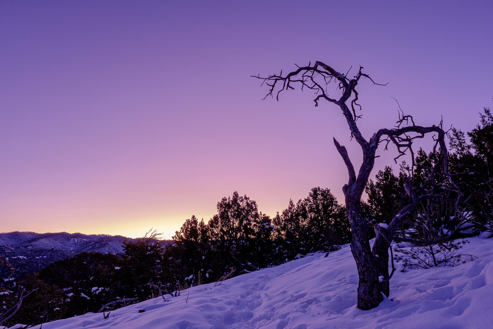 xf16-80mm f4 r ois wrの作例 レビュー レンズキット ブログ 雪山の画像