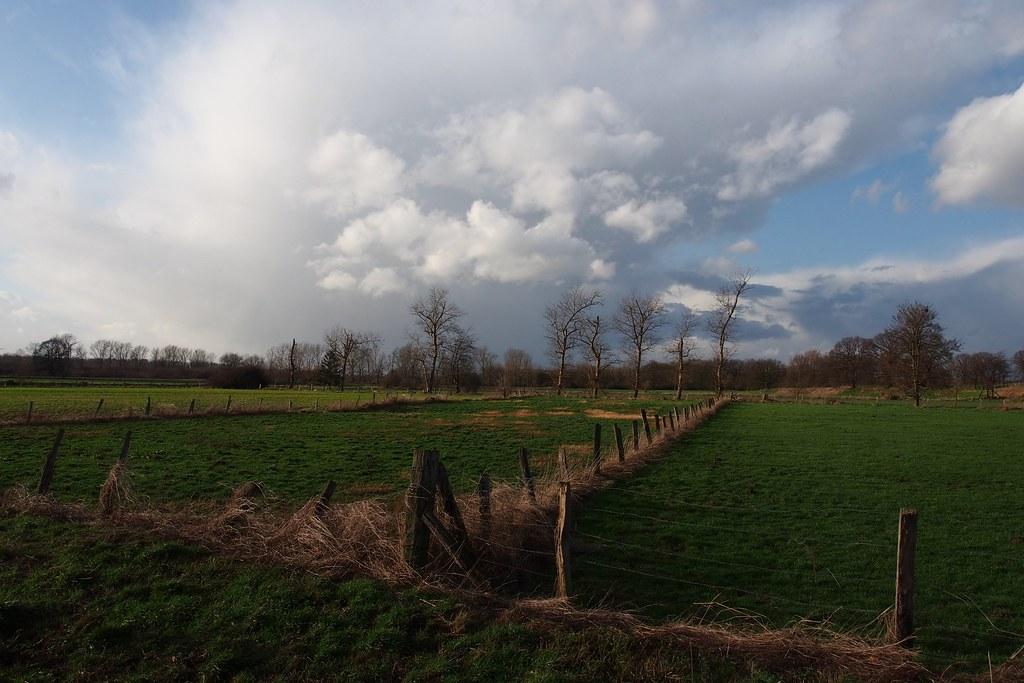 Wolken über den Rurauen