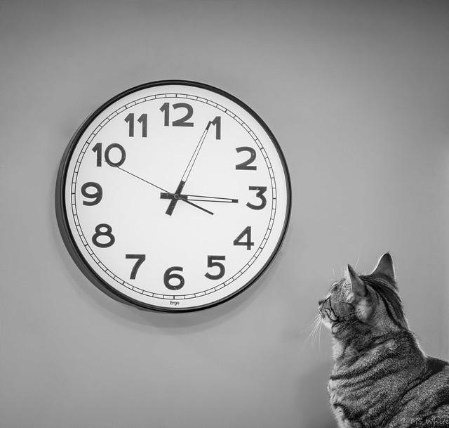 Watching the clock.