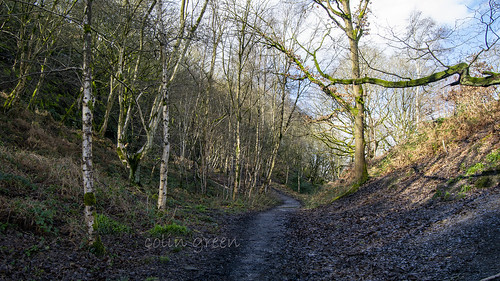 North Dean Woods