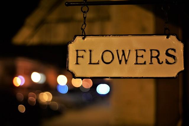 Bokeh Bouquet