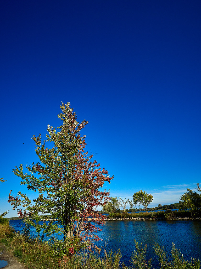 Blue Sky and Early Fall Colour