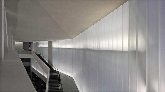 Bloch Light