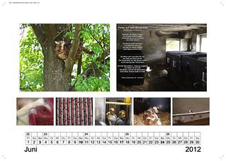 2012 Kalender MaO_Page_07