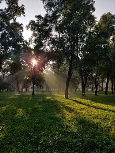 green outdoor dhaka bangladesh sun sunrays sunrise sunlight greenery park jogging morning morningwalk