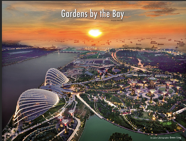 Gardens by the Bay 2020-02-27 at 11.31.38 PM