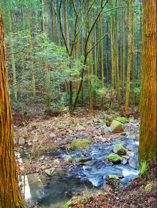 549-Japan-Kurokawa Onsen