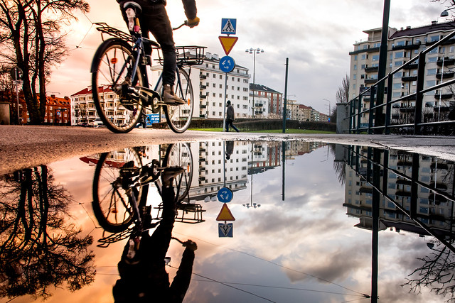 Reflections on a puddle - Poem by Debbie Millman (explore)
