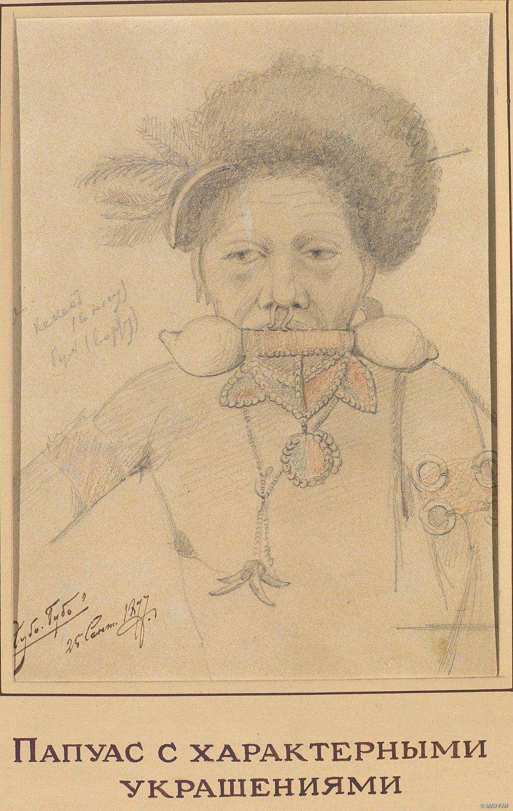 1877. Папуас с характерными украшениями. Губо-Губо. Кекес (в носу), буль (во рту). 25 сентября