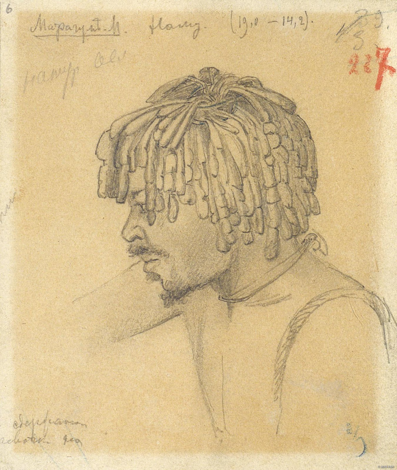 1876-1877. Наму - папуас из дер. Марагум-Мана. Папуасы Новой Гвинеи