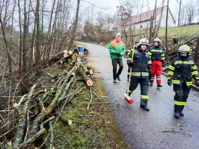 SturmschadenStallberg-4