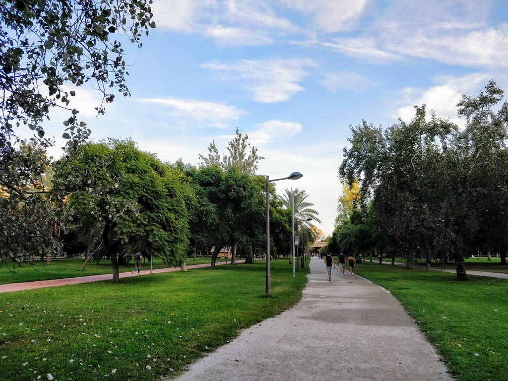 Strolling around in the Turia Park