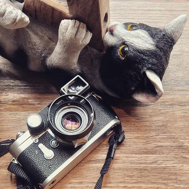 Leica 八枚玉人像寫真 35mm f2