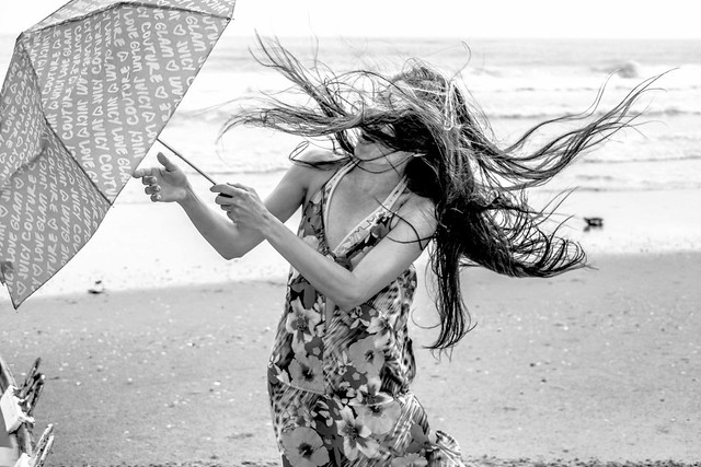 Wind blow on the beach BW