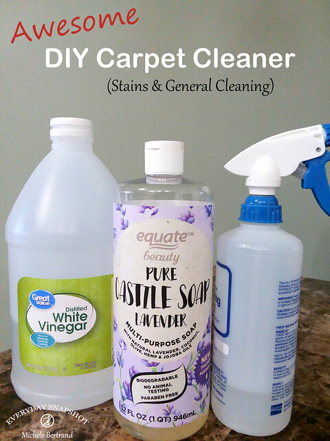 DIY Carpet Cleaner & Stain Remover