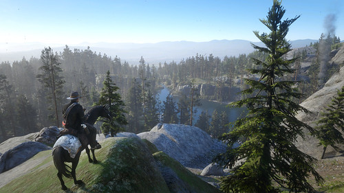 Red Dead Redemption 2 - Tall Trees Region