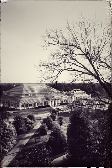 Timeless Kew Gardens