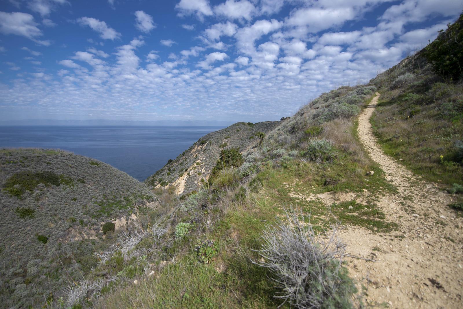 Santa Cruz Hike 1