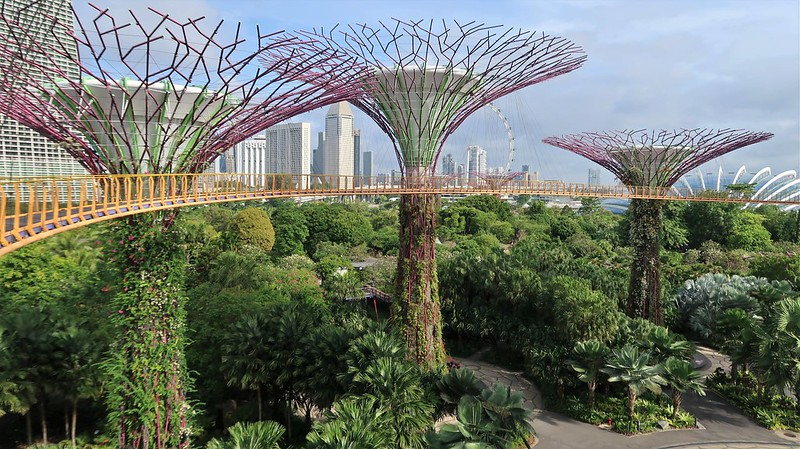 SINGAPORE, February 2020