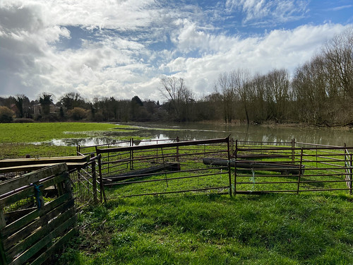Flooded Water Meadows | by Martin Pettitt