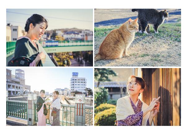 愛知県瀬戸市の観光スポットめぐり 親子でお着物 瀬戸川 猫