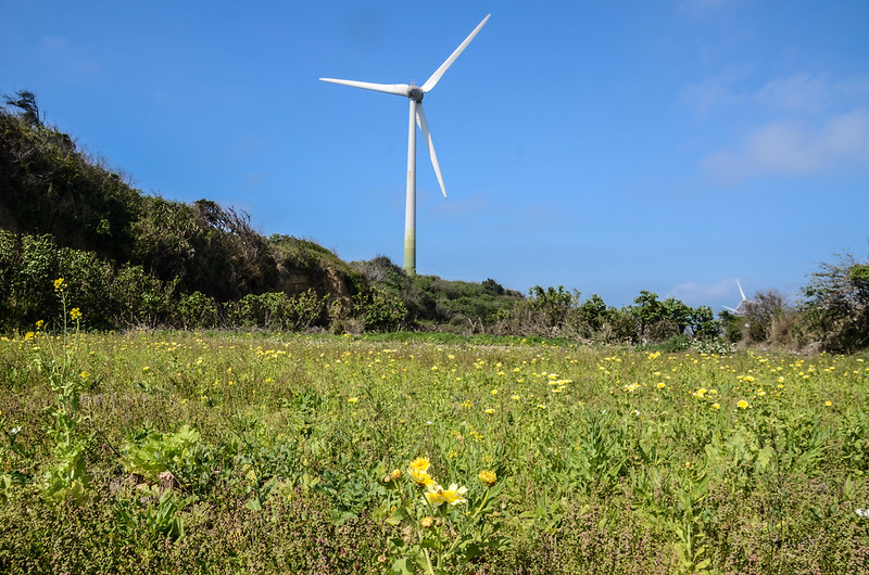 大山腳山附近風力發電大風扇