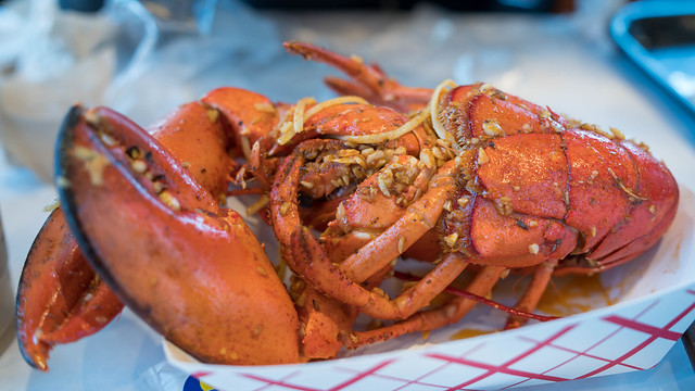 A scrumptious looking lobster.