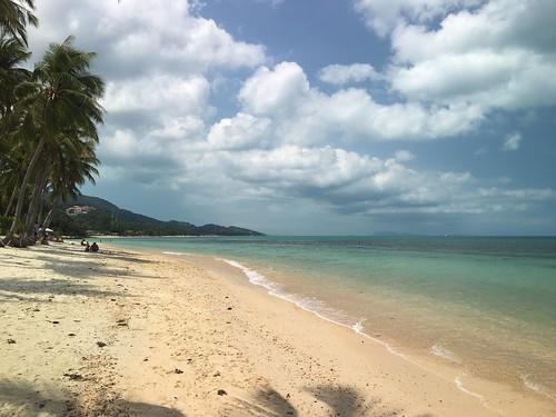 サムイ島 3月2日 ビーチで癒されよう!