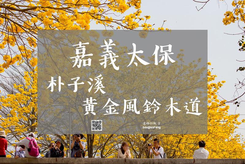 【遊記】嘉義太保朴子溪黃金風鈴木道 (1)