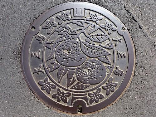Omishima Ehime, manhole cover 3 (愛媛県大三島町のマンホール3)