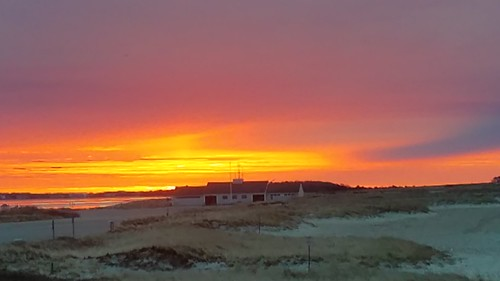 sunrise kalmusbeach hyannis barnstable massachusetts winter gold orange yellow beachhouse beach 2020 sand grasses