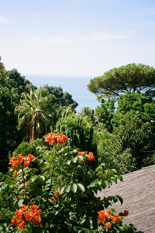 The Little Magpie Guide to Ischia Botanic Gardens