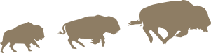 Silhouette of three bison running left to right
