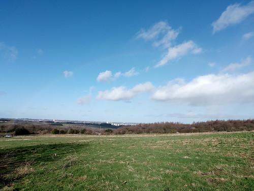Blue sky over the farm Feb 20