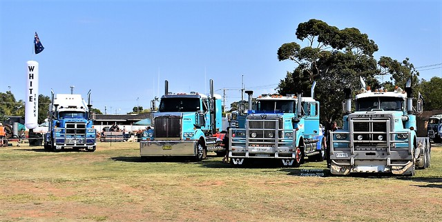Whites and Western Stars Heaven at Kyabram