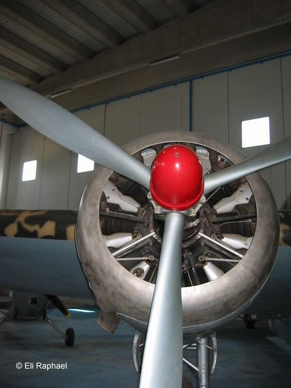 Savoia-Marchetti S.M.79 Sparviero 4