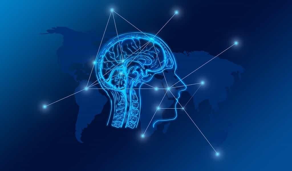 des-neurones-biologiques-et-artificiels-communiquent-en-ligne
