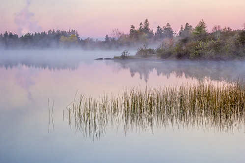 lake morning sunrise fog dew water pink tranquil serene peaceful calm