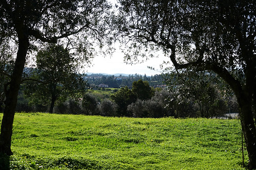 portugal centre luso nature paysages landscapes