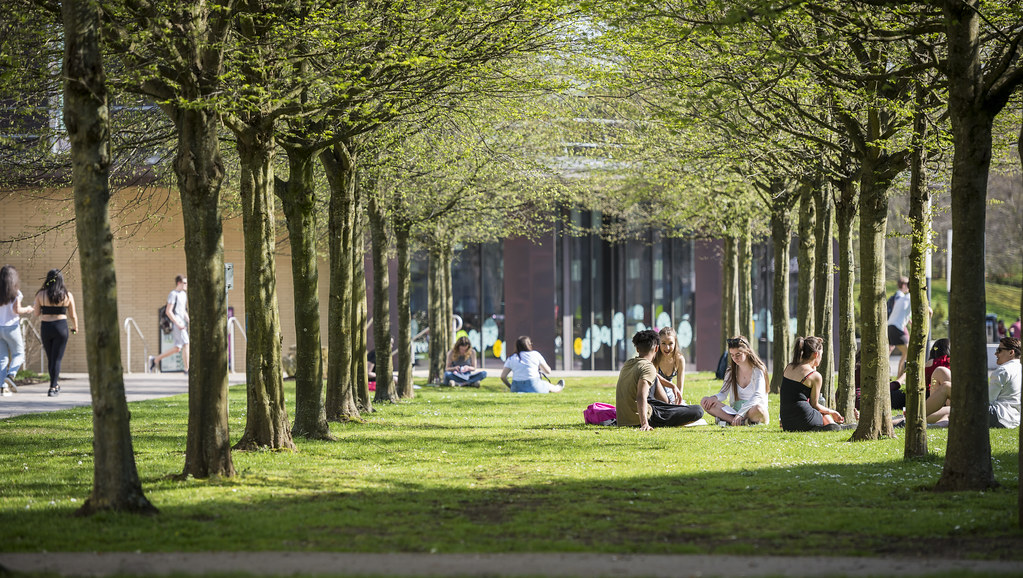 Image of students on campus, by the Lime Tree Cafe.