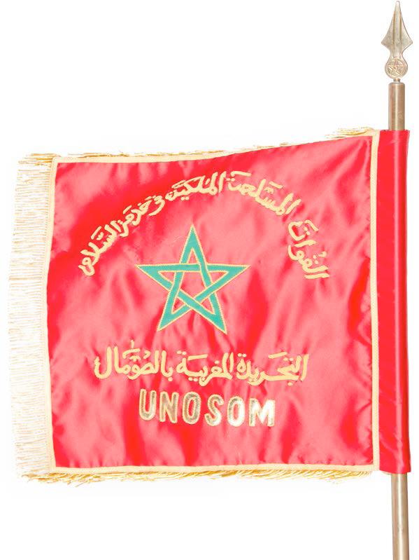 Les FAR en Somalie - Page 2 49613760423_726ba23d75_o_d
