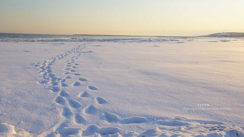 japan 日本 北海道 hokkaido 大津海岸 道東 釧路 canon 5d3 1635 ef70200mmf4lisusm 日落 sunset 冬 白 雪 ゆき