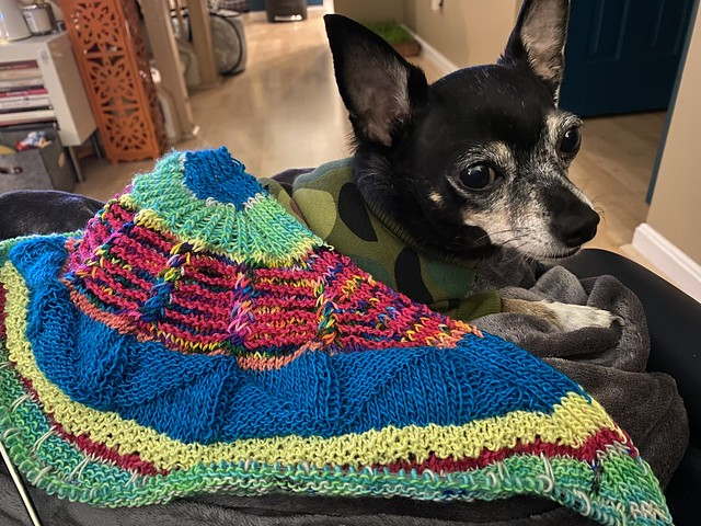 Fantastitch shawl and Jellybean