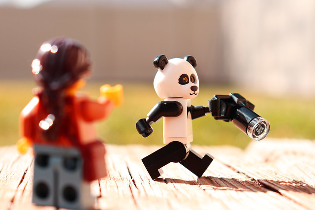 Bad, bad panda! Come on.  We want photos.